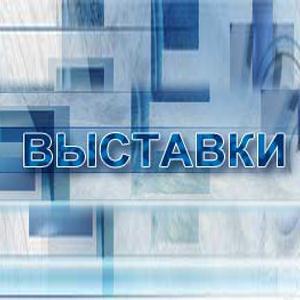 Выставки Родионово-Несветайской